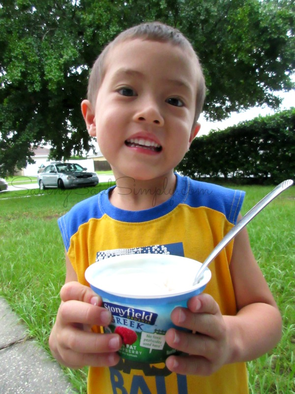stonyfield-greek-yogurt
