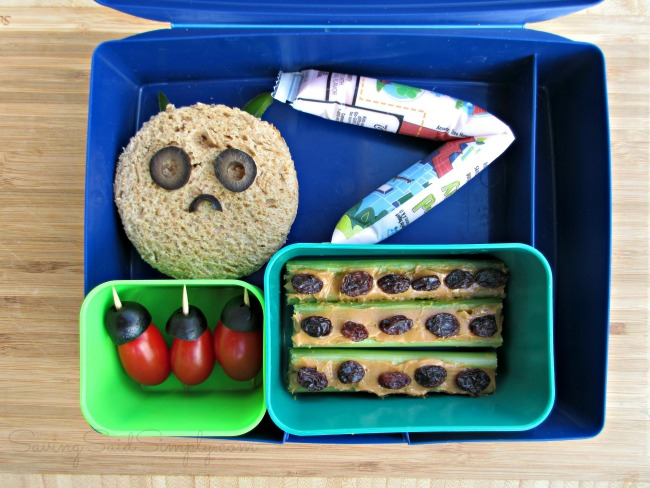 Bug bento lunchbox