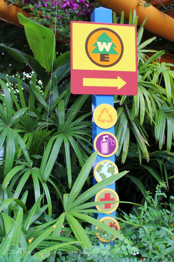 Animal kingdom wilderness explorers