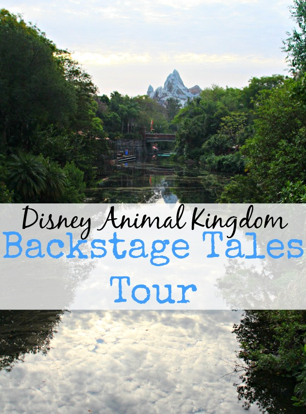 Disney animal kingdom backstage tales tour