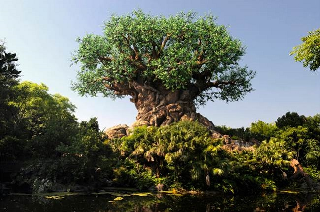 Disney animal kingdom blogger trip