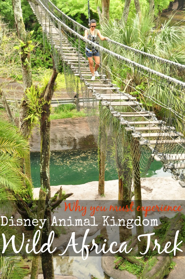 Disney wild Africa trek review