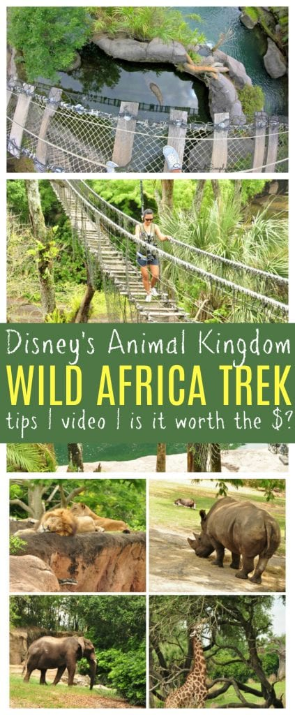 Disney wild Africa trek review pinterest