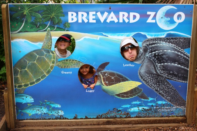Brevard zoo family tips