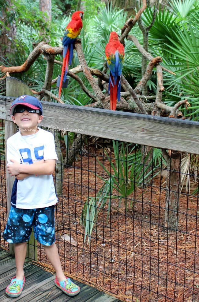 Brevard zoo family