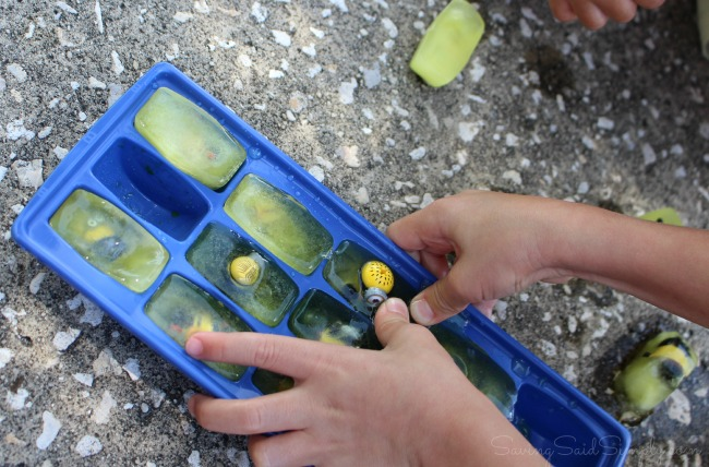Kids ice sensory play