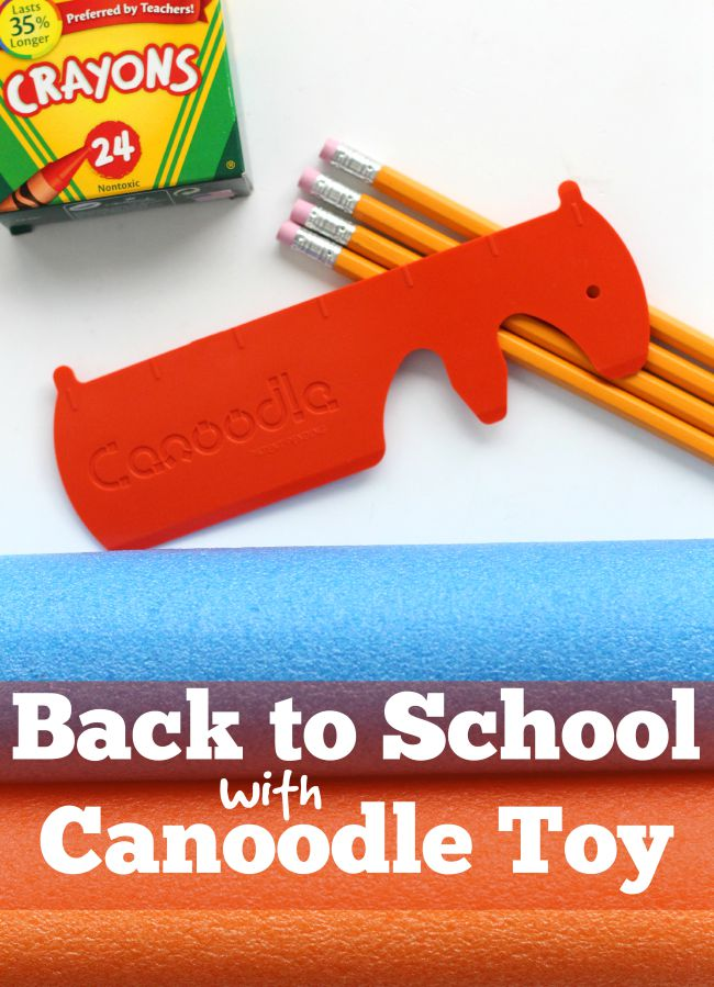 Back to school Canoodle toy