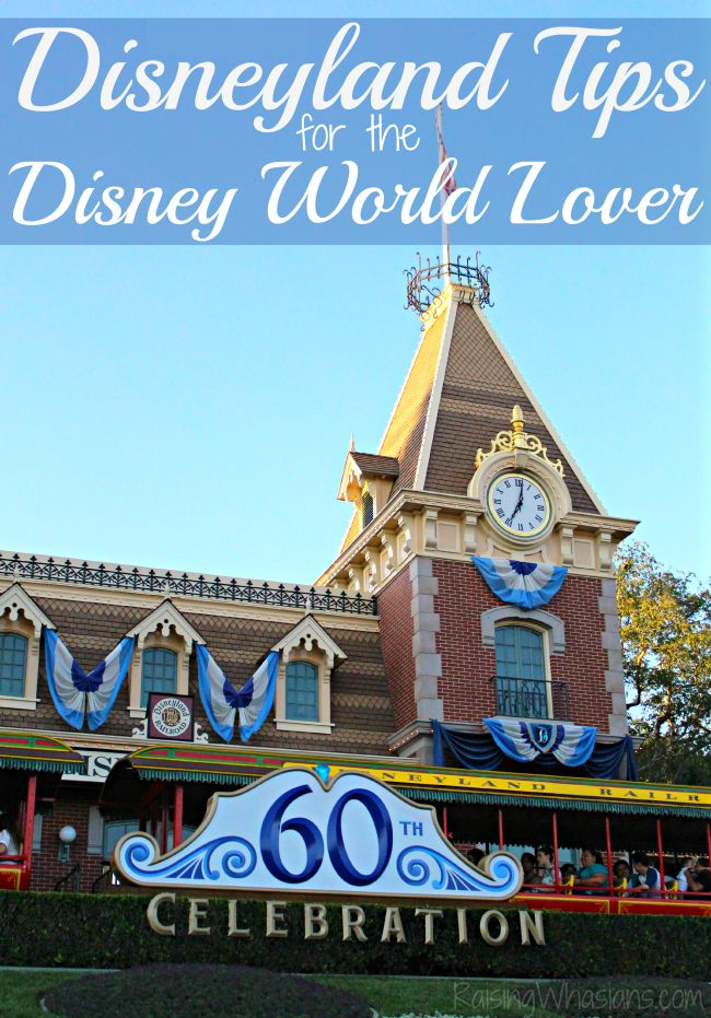 Disneyland tips for the Disney world lover