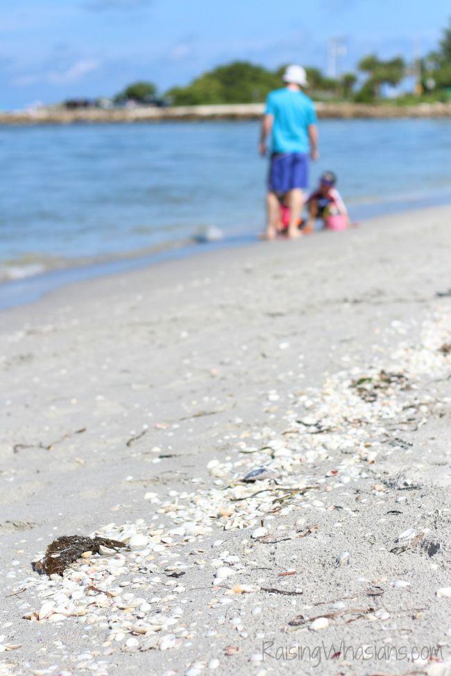 Best Sanibel island beaches