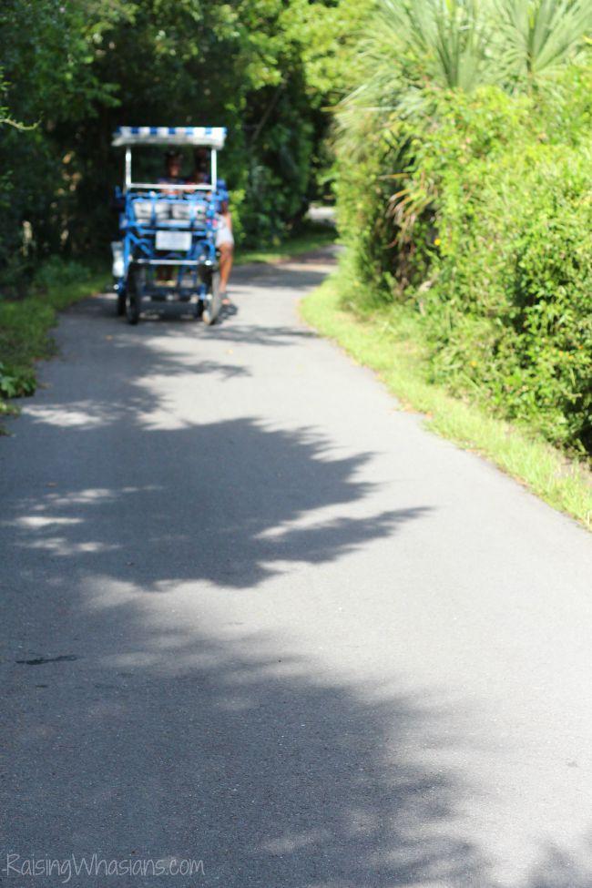 Bicycle ride Sanibel