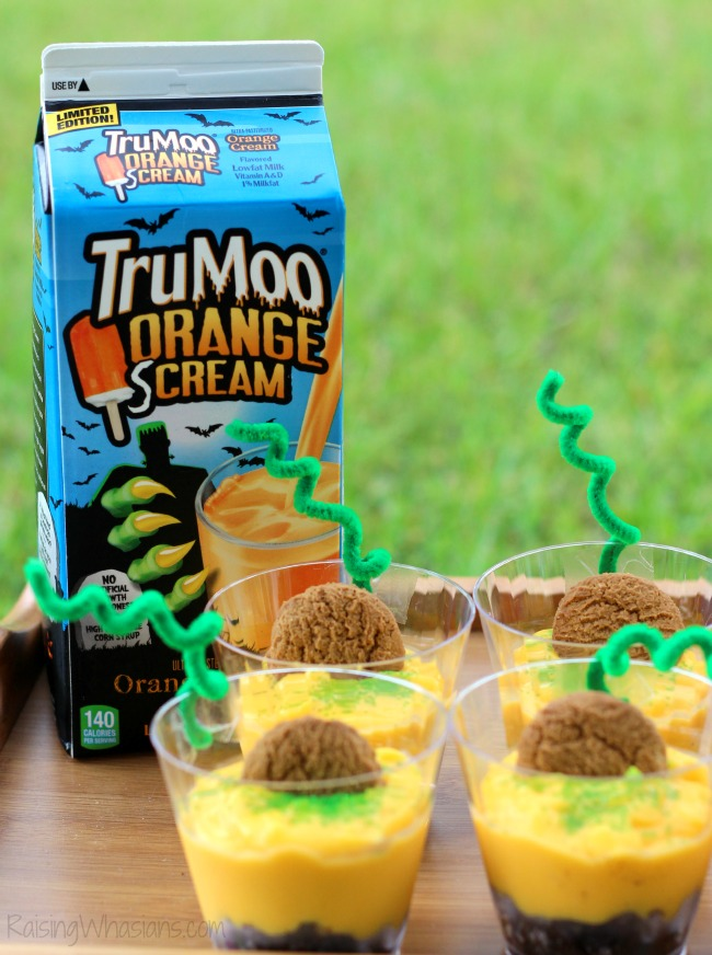 TruMoo orange scream milk review