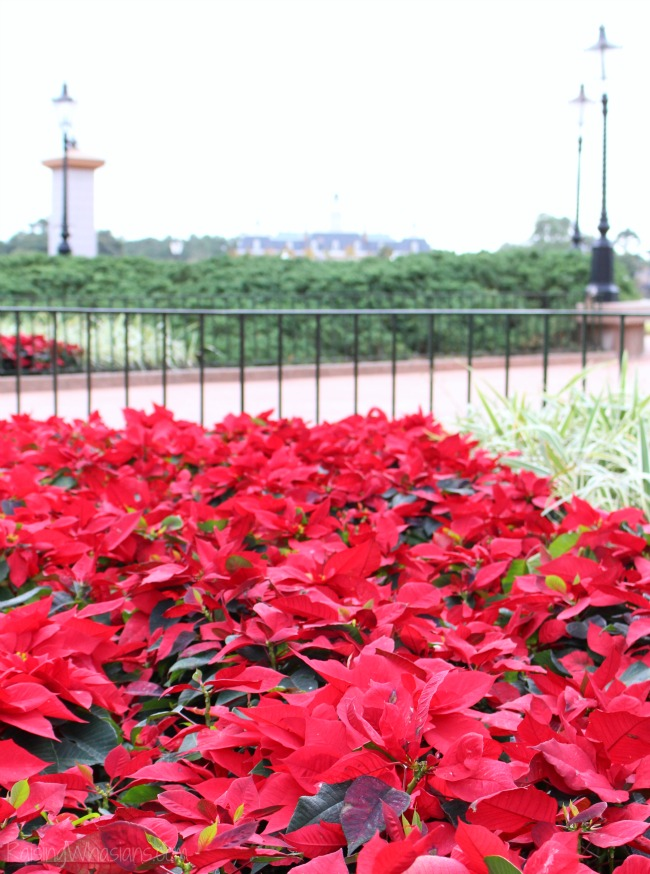 Epcot candlelight processional what you need to know