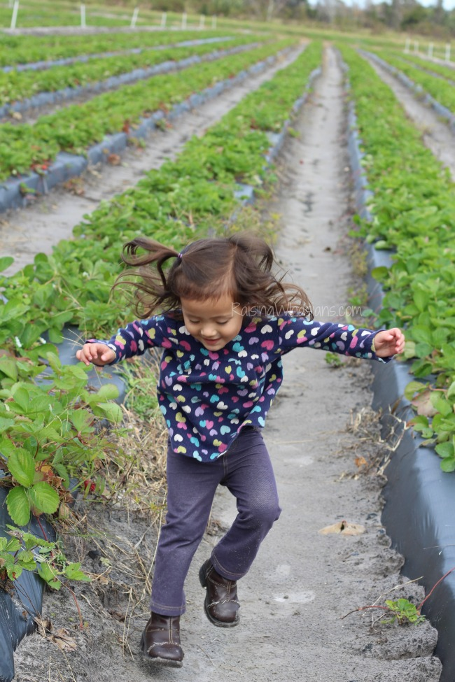 Picking strawberries with toddler
