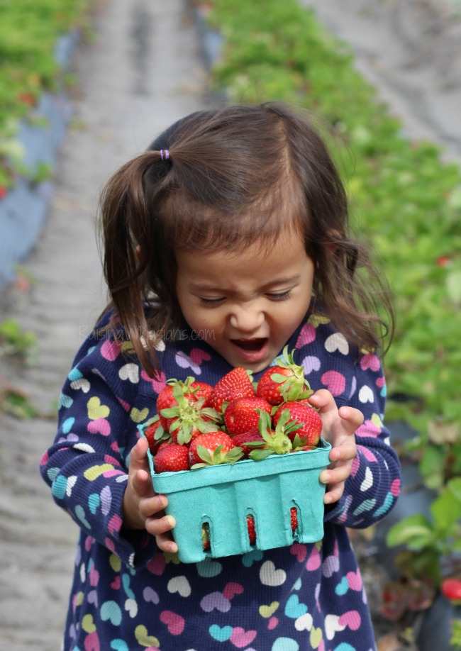 Strawberries toddlers