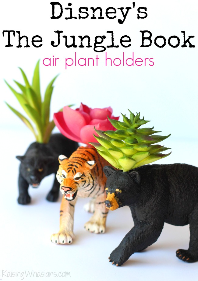 DIY Disney the jungle book air plant holders