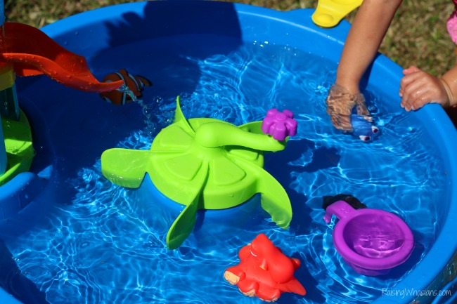 Finding Dory water table