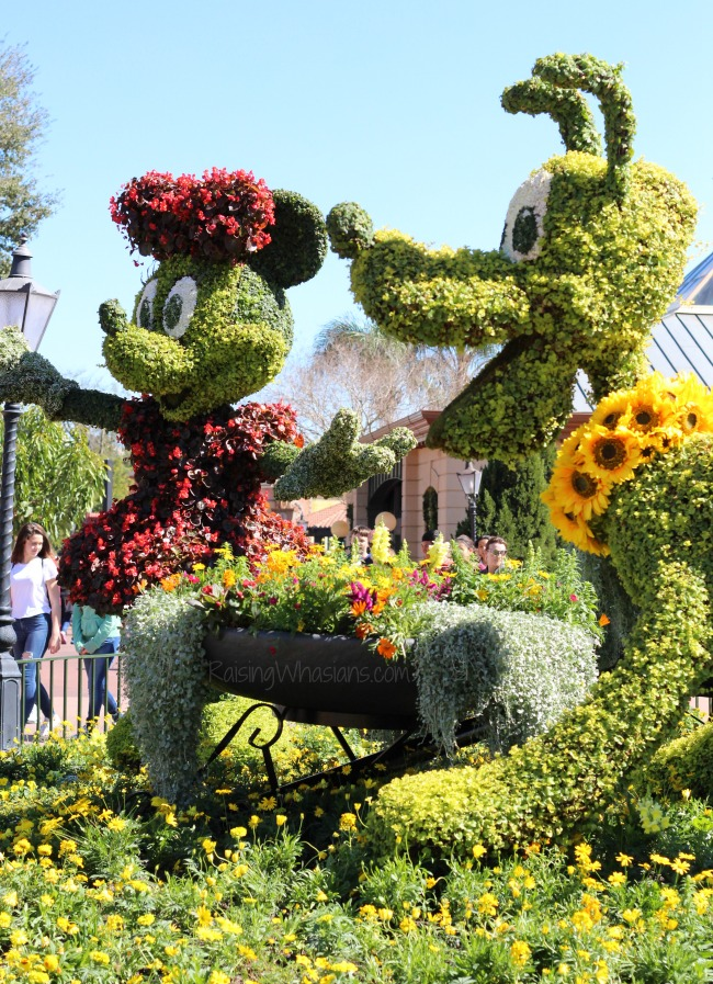 Flower and garden festival 2016 Disney