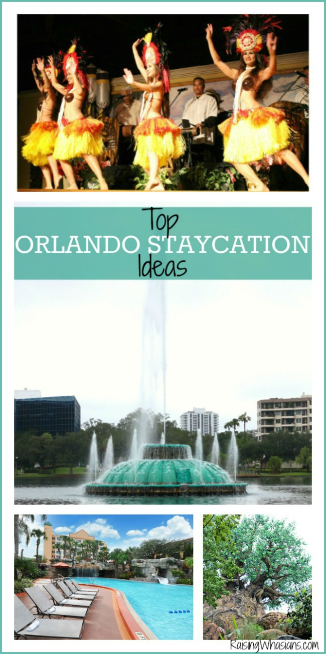 Top Orlando staycation ideas