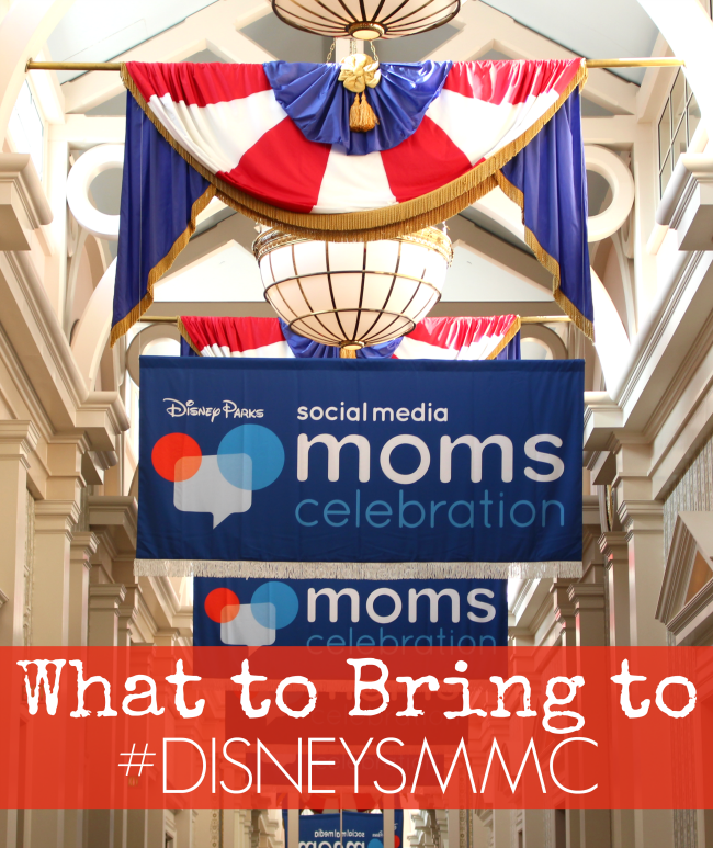 What I brought to my first DisneySMMC