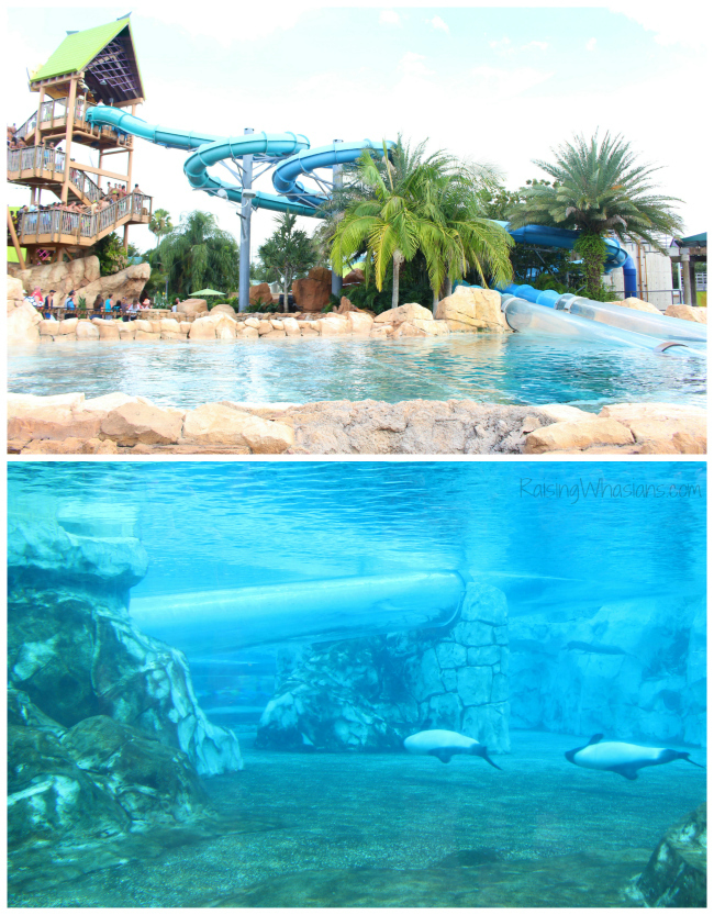 Great Orlando Water Parks Pools And Splash Pads To Cool Off