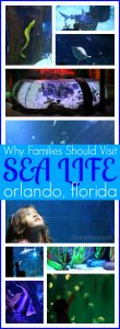 Why your family should visit sea life Orlando aquarium