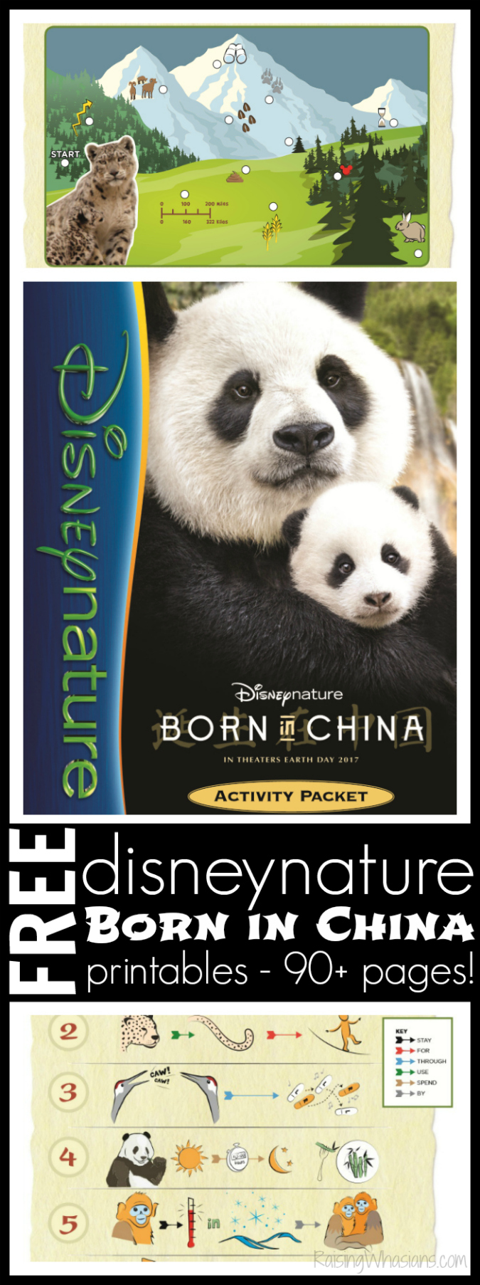 Free Disneynature coloring sheets born in China