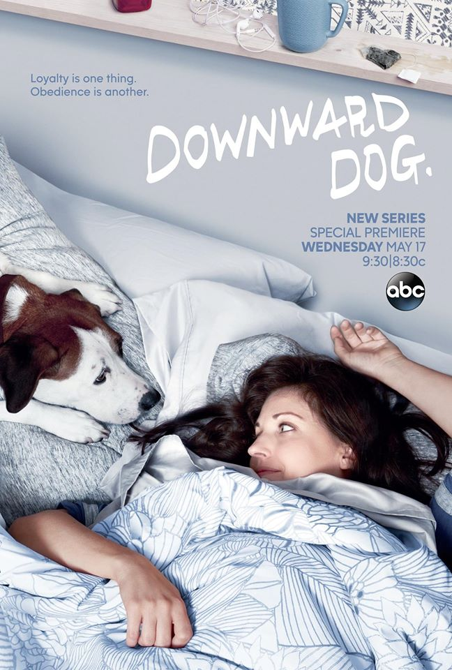 Downward dog show ABC