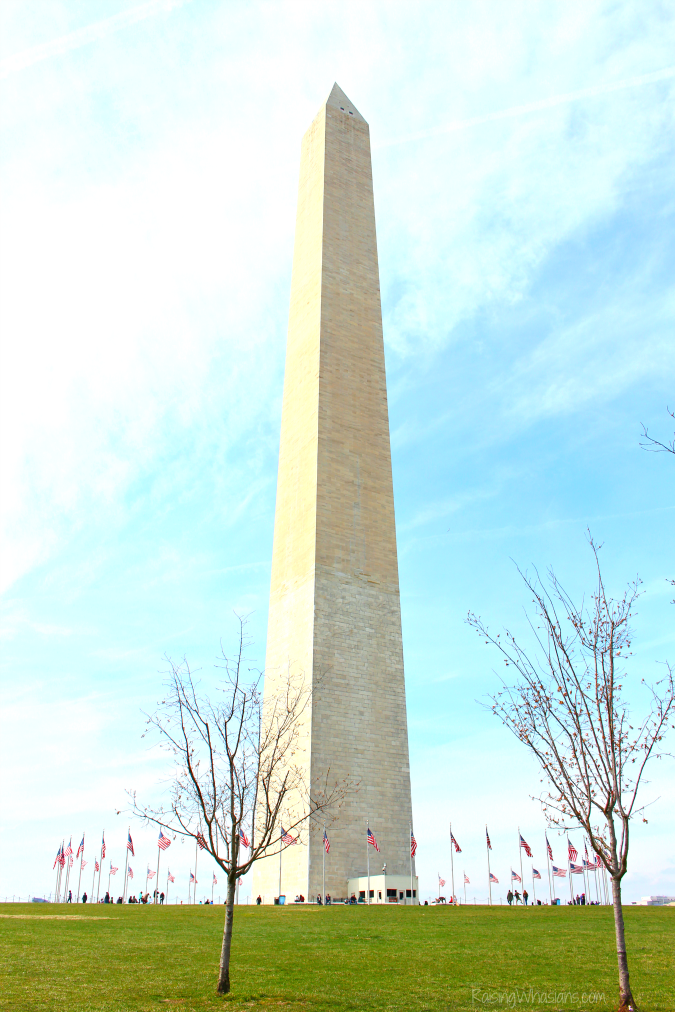 Top free things to do in Washington dc