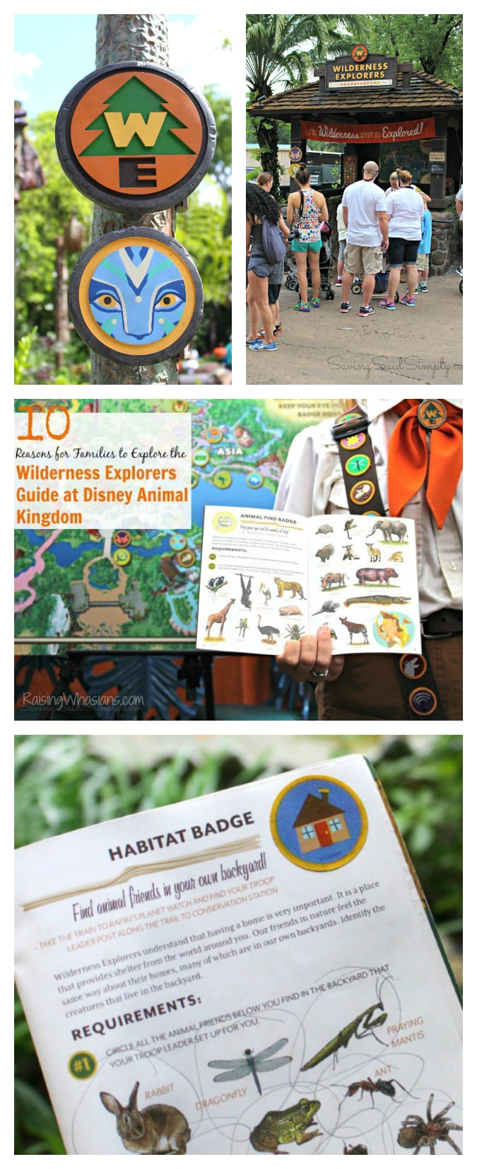 Wilderness explorers guide tips pinterest