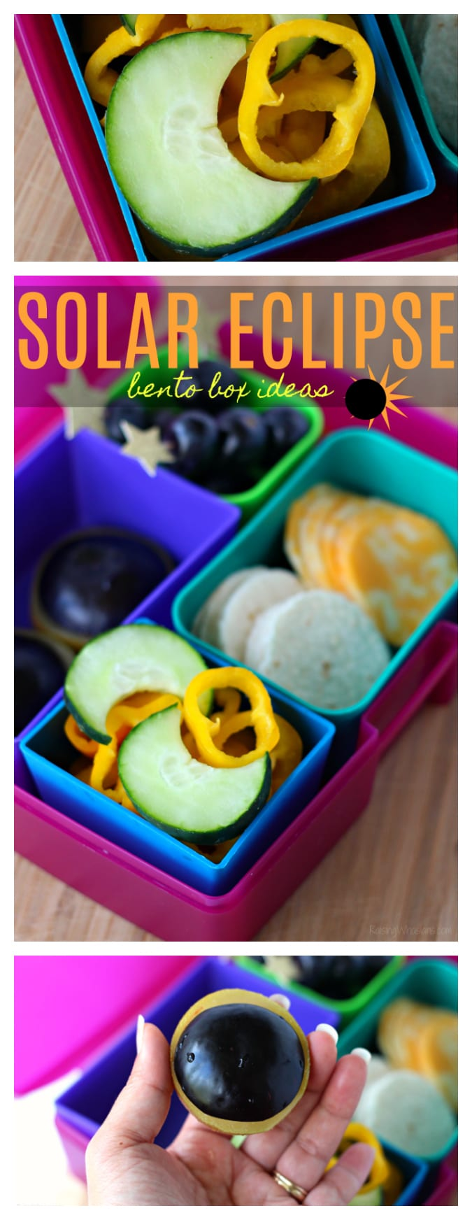 Solar eclipse bento box ideas pinterest