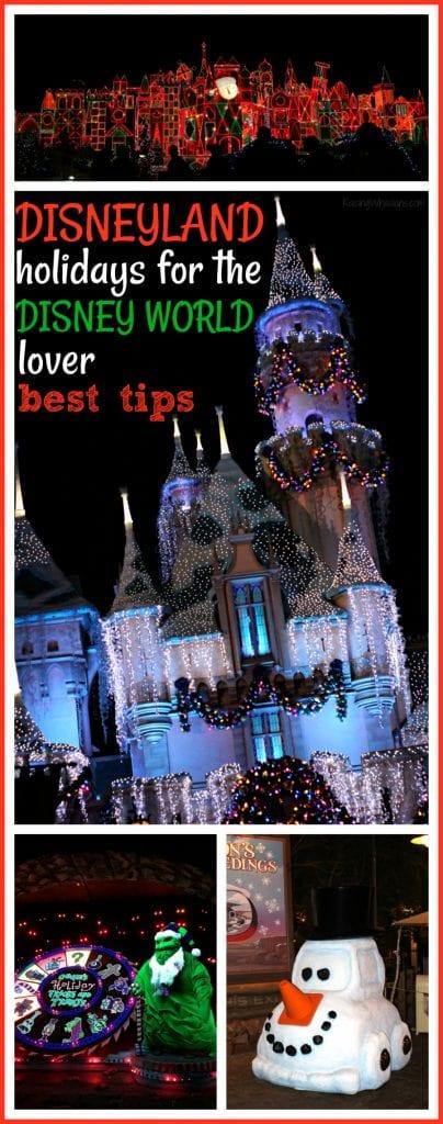 Disneyland holidays tips for the Disney world lover pinterest