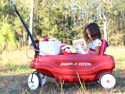 Personalized radio flyer book