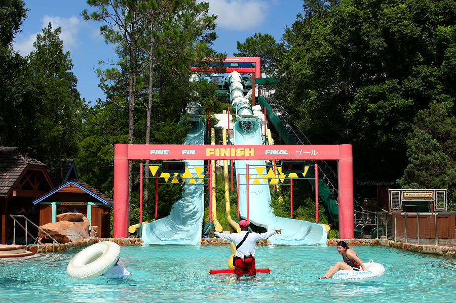 Best blizzard beach tips