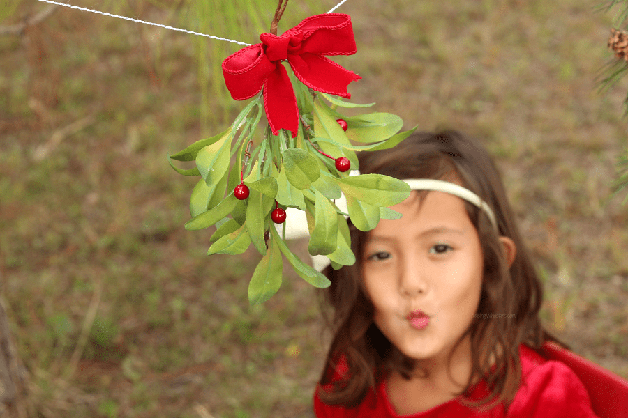 Christmas kissing booth ideas