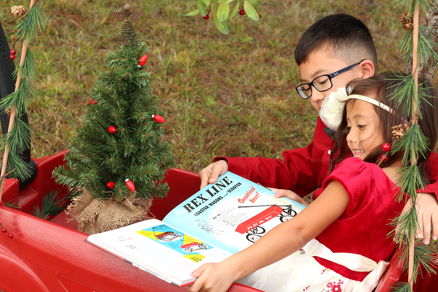 Radio flyer Christmas gift idea