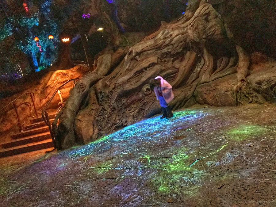 Pandora disney after hours