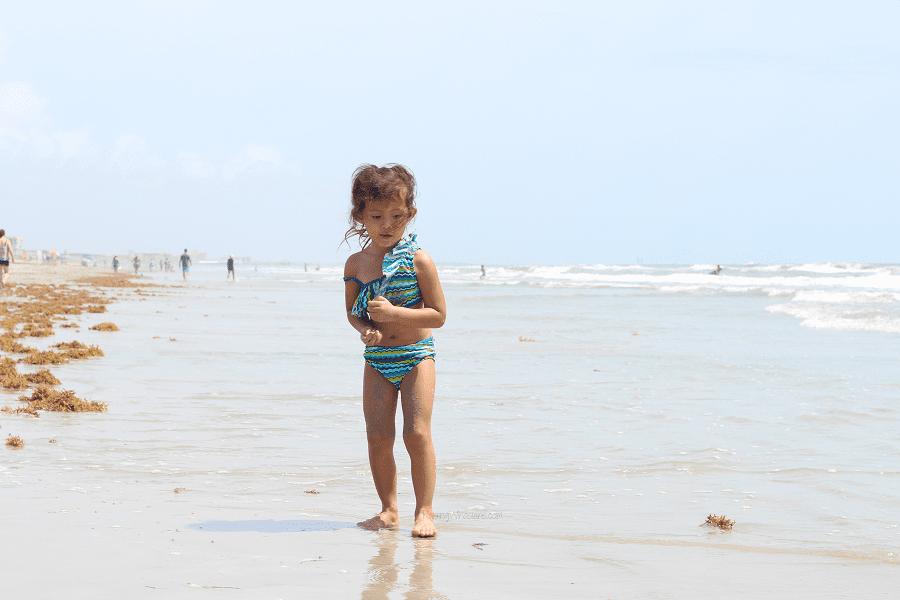 2019 Florida 529 savings plan code