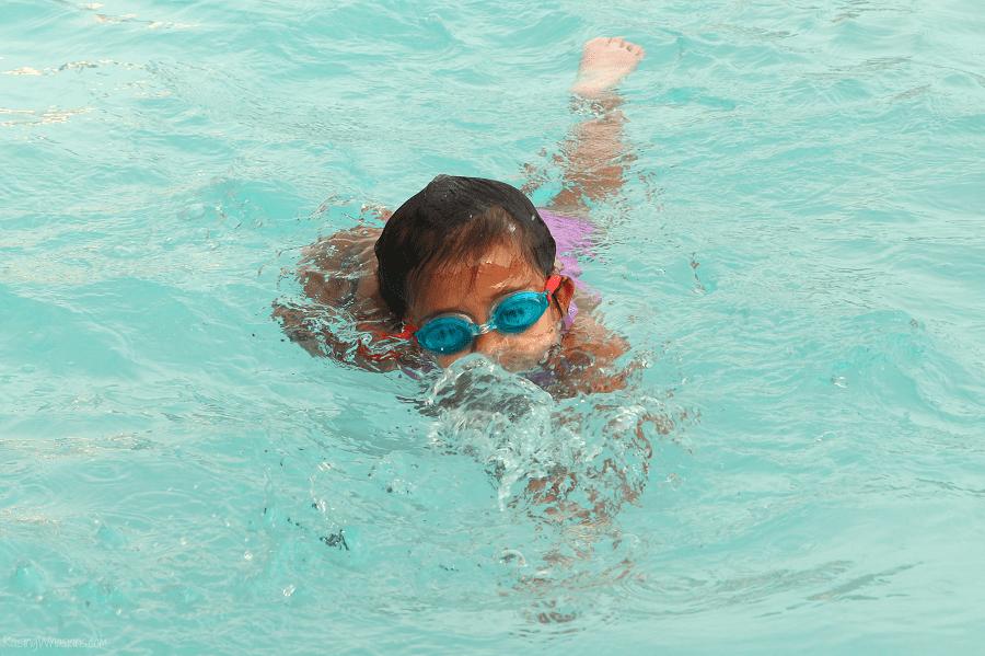 Summer swim essentials