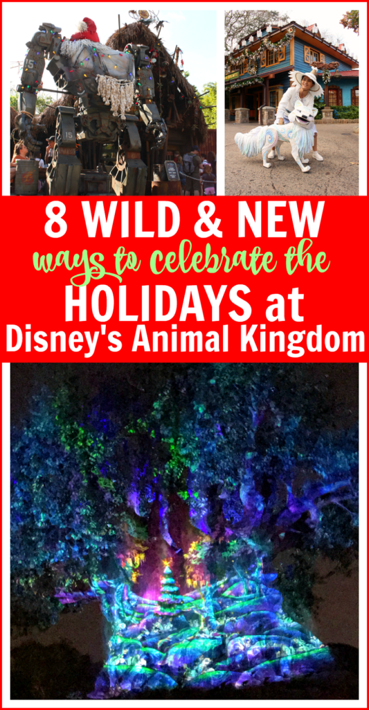 Best animal kingdom holidays